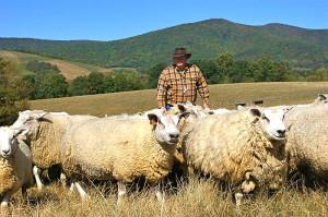 shepherd-craig-rogers-2